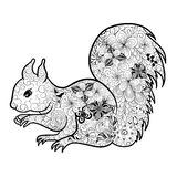 Squirrel doodle Stock Images