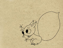 Squirrel drawing Royalty Free Stock Photos