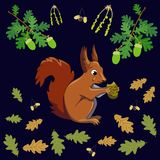 Squirrel eating stock illustration