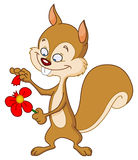 Squirrel with flower Royalty Free Stock Photos