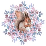 Squirrel and flowers Stock Photography