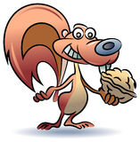 Squirrel with food. Squirrel with a nut illustrated cartoon image Royalty Free Stock Images