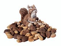 Squirrel Gnome with Nuts. Squirrel Gnome sitting in a pile of fresh nuts royalty free stock photography
