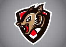 Squirrel gray shield logo vector. Emblem illustration design idea creative sign Royalty Free Stock Images
