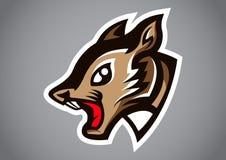 Squirrel head gray shield logo vector. Emblem illustration design idea creative sign Stock Image