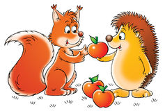 Squirrel and hedgehog Stock Photography