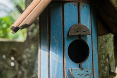 Squirrel House. Handmade squirrel house is hanging under the big tree stock image