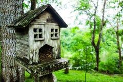 Squirrel house Stock Photo