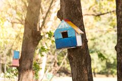 Squirrel house on the trees at public park. Animal house hanging at public park stock images
