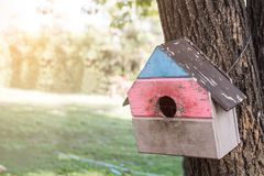 Squirrel house on the trees at public park. Animal house hanging at public park stock photography