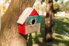 Squirrel house on the trees at public park. Animal house hanging at public park royalty free stock images