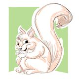 Squirrel illustration. A free hand squirrel illustration Royalty Free Stock Image