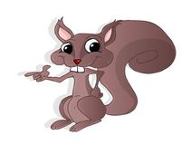Squirrel illustration. A funny squirrel cartoon character royalty free illustration
