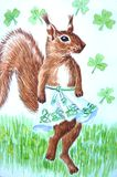 Squirrel of the Irish Dance Royalty Free Stock Images