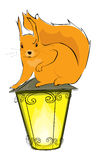 Squirrel and lantern Stock Photography