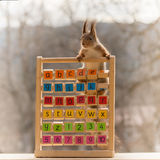 Squirrel learns the alphabet Stock Images