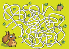 Squirrel Maze Game Stock Photos