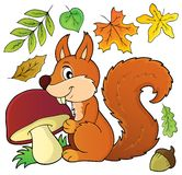 Squirrel with mushroom theme image 1 Stock Images