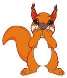 Squirrel no talk Stock Image