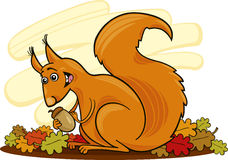 Squirrel with nut. Cartoon illustration of funny squirrel with nut Stock Photography