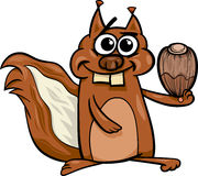 Squirrel with nut cartoon illustration Stock Photography
