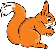 Squirrel with a nut. Illustration Royalty Free Stock Image