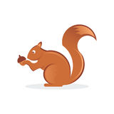 Squirrel with nut. Illustration that can be used for a logo or as isolated graphic element Royalty Free Stock Photo