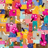 Squirrel pattern Stock Photography
