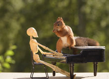 Squirrel on a piano and a skeleton behind it Royalty Free Stock Photography