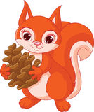 Squirrel with a pine cone Royalty Free Stock Photography