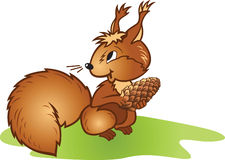 Squirrel with a pinecone Stock Image