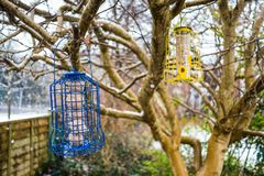 Squirrel Proof Bird Feeder Hanging on a Tree Stock Photos