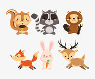 squirrel raccoon beaver fox rabbit and deer icons image Royalty Free Stock Photo