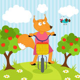 Squirrel riding bicycle Stock Image