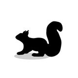 Squirrel rodent mammal black silhouette animal. Vector Illustrator Royalty Free Stock Photos