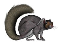 Squirrel scratching - 3D render Royalty Free Stock Photography