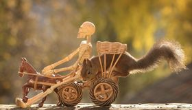 Squirrel with skeleton  on a coach Stock Photo