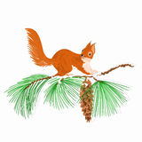 Squirrel on a snow branch Christmas motive vector Stock Image