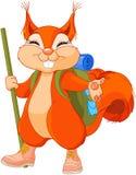 Squirrel traveler Stock Image