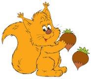 Squirrel (vector clip-art) Royalty Free Stock Image