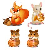 Squirrel with walnut, mouse with musical trumpet and hamsters with biscuits. Fairy animals. For animation, childrens illustrations, book and other design needs Stock Photos