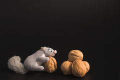 Squirrel and Walnuts royalty free stock images