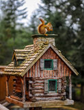 The squirrel on the wood house Stock Image