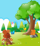 Squirrels and butterflies in the park. Illustration Royalty Free Stock Images