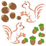 Squirrels with hazelnuts on white background. Vector illustration Royalty Free Stock Images