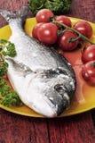 Squisitezza Mediterranea Dorado del pesce Immagine Stock
