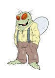 Sr. individuo de la mosca Imagen de archivo