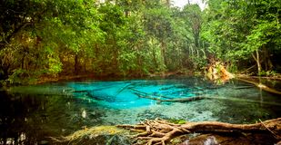 Sra Morakot blåttpöl på det Krabi landskapet, Thailand Royaltyfri Bild