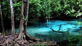 Sra Morakot Blue Pool stock video footage