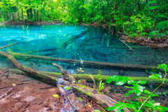 Sramorakod di legno e blu dell'acqua dello stagno al krabi del sud della provincia Immagine Stock Libera da Diritti